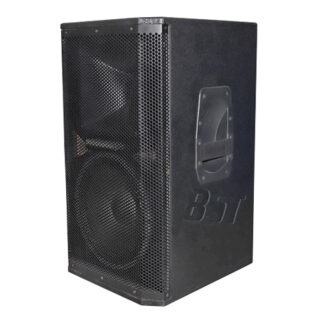 BOXA PRO 2 CAI 10 inch/25CM 120W RMS BST
